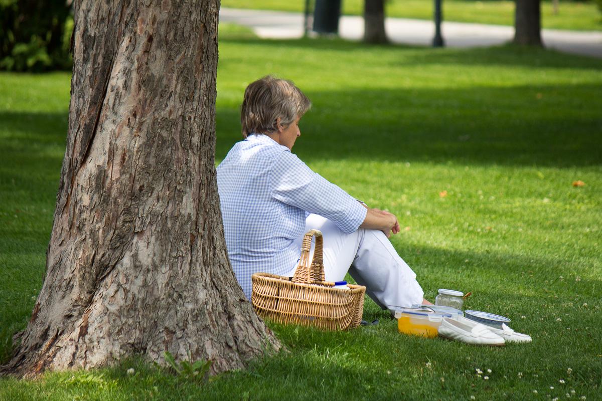 Zena - piknik